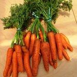 Carrots-w-Tops