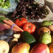 Fruit Veggie Box