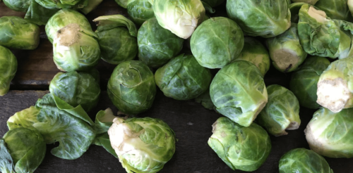 Brussels Sprouts from Gaytan Family Farm