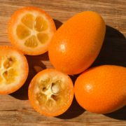 Kumquats from Rancho Del Sol