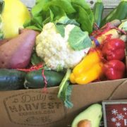 farm box delivery subscription
