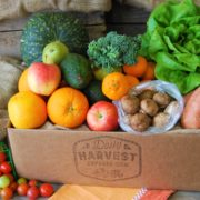 Fruit & Veggie Box Delivered