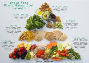 plant based diet food pyramid