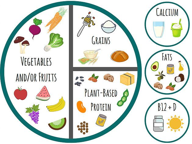 Getting Started on a Plant Based-Diet